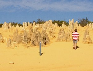 Author at The Pinnacles, Western Australia